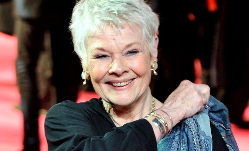 Reductress » 7 Times Dame Judi Dench Was So Perfect It Made You Go ...