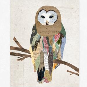 owls4dayz