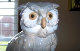 Cute Owl Art to Remind You Intelligence is Sad and Isolating