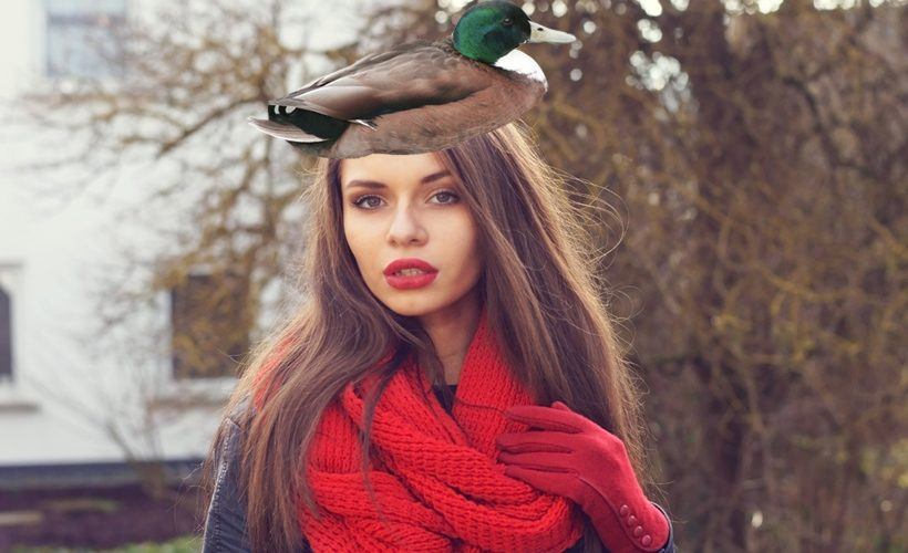 Duck Hat - Reductress
