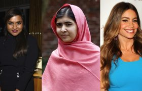 Man Who Confused Mindy Kaling and Malala Yousafzai Apologizes to Sofia Vergara
