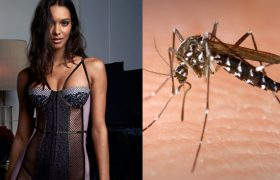 4 Skin-Baring Looks Guaranteed to Attract That Dangerous New Breed of Mosquito