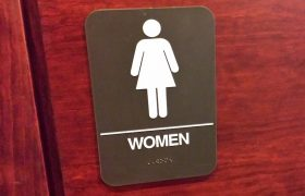 A-Line Dress Inspiration: Female-Only Bathroom Signs
