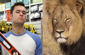 Racist Friend from High School 'Very Upset' Over That One Lion