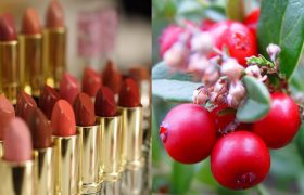 We Compare Name-Brand Makeup With These Gross Berries I Found