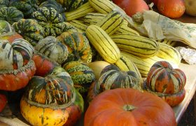 5 Tasty Fall Vegetables You Must Not Eat for They Are Cursed