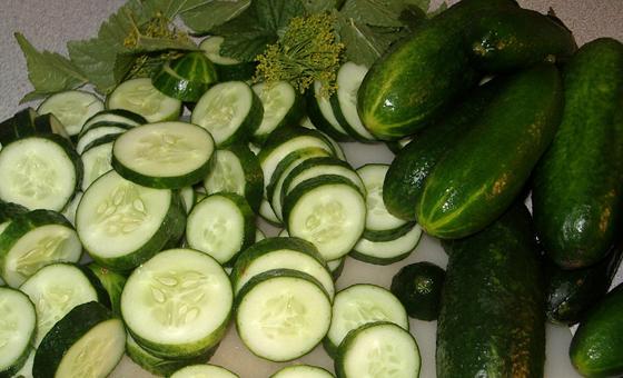 2-Persian cucumber