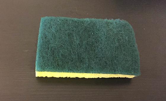 1. sponge