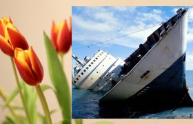 How to Use the Language of Flowers to Say, 'Mayday! My Vessel is Sinking! Send Help!'