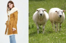 4 Sheepskin Looks That Say, 'Honestly, Fuck Sheep'