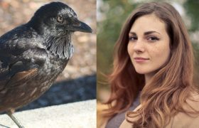 Beautiful: This Woman Embraced Her Crow's Feet, Her Crow's Feathers, And Every Other Part Of Her Pet Crow's Body