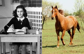Newly Discovered Pages From Anne Frank's Diary Reveal She Was A Horse Girl