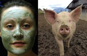 5 Mud Masks That Will Make You Feel Like a Luxurious Little Farm Pig