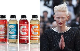 Kombucha Scoby Just Tilda Swinton's Brain