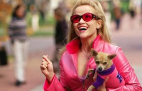 4 Harrowing Feminist Shows You'll Need To Watch 'Legally Blonde' After