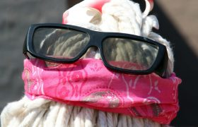 How to Enjoy Summer When Your Friends Are A Bunch of Mops With Sunglasses On