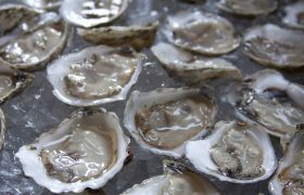 Inspiring! This Woman Saved $250K Just By Switching To Dollar Oysters