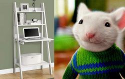 ladder desk side by side with stuart little