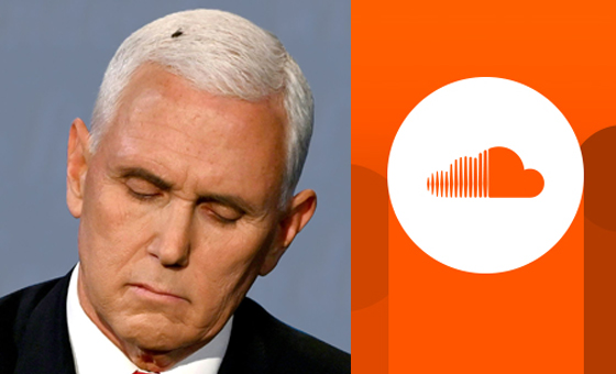 Mike Pence with Fly on Head