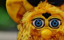 Yellow furby with blue eyes image in Animals