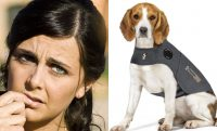 Woman and Dog in Thundershirt