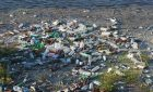 Woman's Only Tinder Matches Are Literal Pieces of Trash From The Great Pacific Garbage Patch