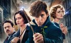 Hollywood Listened! Time For a New Fantastic Beasts Film
